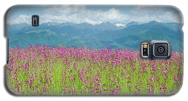 Wildflower Meadows And The Carpathian Mountains, Romania Galaxy S5 Case