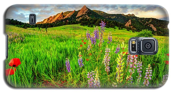 Wildflower Mix Galaxy S5 Case by Scott Mahon