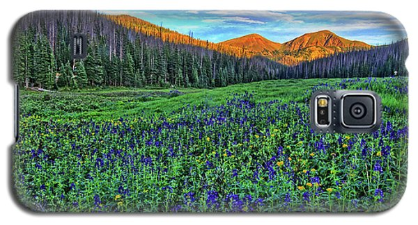 Galaxy S5 Case featuring the photograph Wildflower Park by Scott Mahon