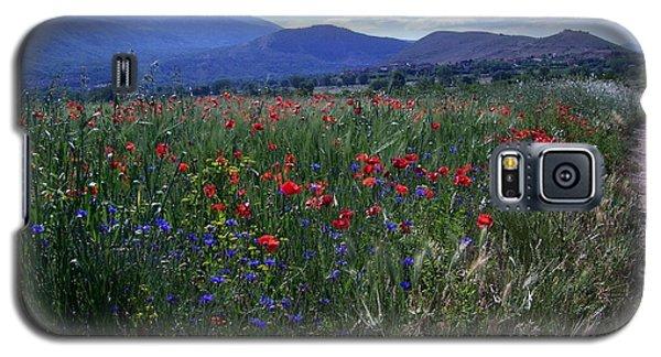 Wildflower Path Galaxy S5 Case