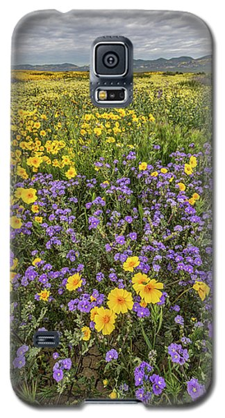 Galaxy S5 Case featuring the photograph Wildflower Super Bloom by Peter Tellone