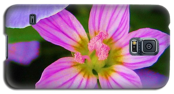 Galaxy S5 Case featuring the photograph Wildflower by Susan Carella