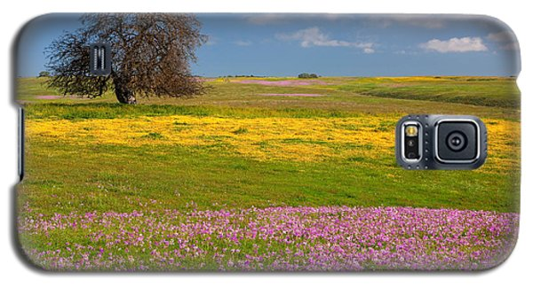 Wildflowers And Oak Tree - Spring In Central California Galaxy S5 Case