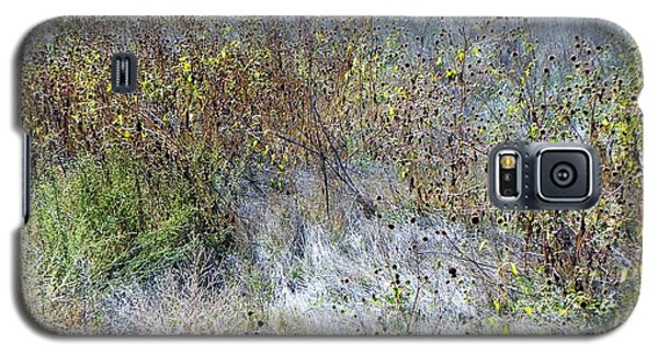 Wildflowers At The Bosque Galaxy S5 Case