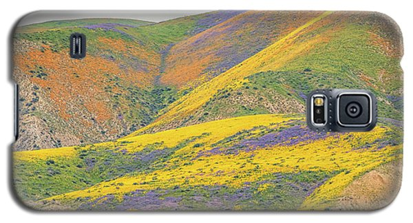Galaxy S5 Case featuring the photograph Wildflowers At The Summit by Marc Crumpler