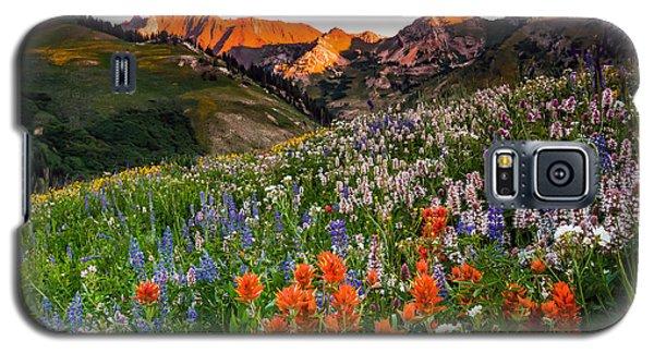 Wildflowers In Albion Basin. Galaxy S5 Case