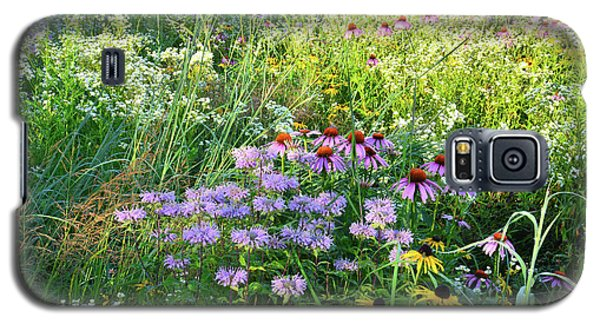 Wildflowers In Moraine Hills State Park Galaxy S5 Case