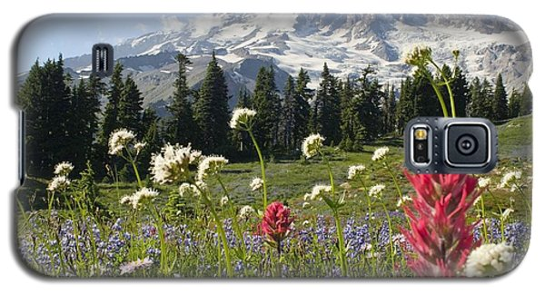 Wildflowers In Mount Rainier National Galaxy S5 Case by Dan Sherwood
