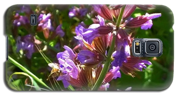 #wildflowers In #purple #country Galaxy S5 Case