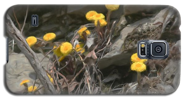 Wildflowers In Rocks Galaxy S5 Case by Smilin Eyes  Treasures