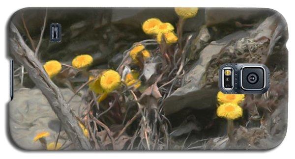 Wildflowers In Rocks Galaxy S5 Case