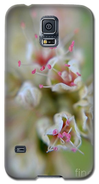 Galaxy S5 Case featuring the photograph Wildflowers by Janice Spivey