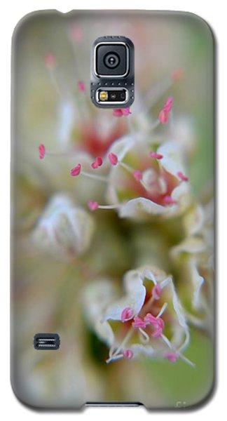 Wildflowers Galaxy S5 Case by Janice Spivey