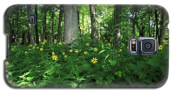 Galaxy S5 Case featuring the photograph Wildflowers On The Edge Of The Forest by Scott Kingery