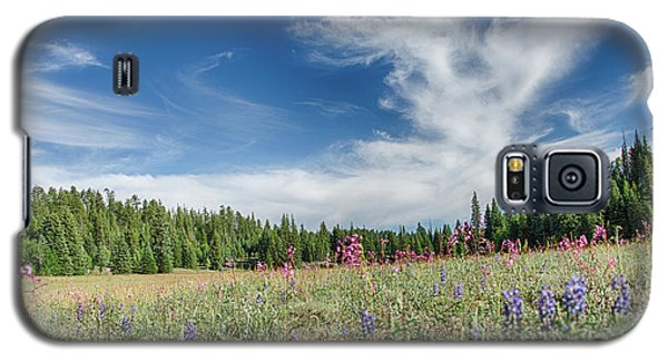 Wildflowers Reach For The Sky Galaxy S5 Case