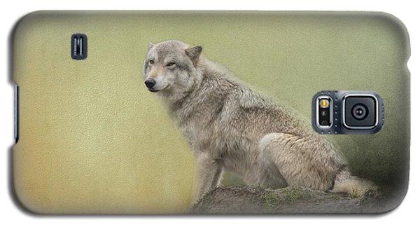 Wildlife Alaska Galaxy S5 Case