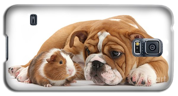 Will You Be My Friend? Galaxy S5 Case