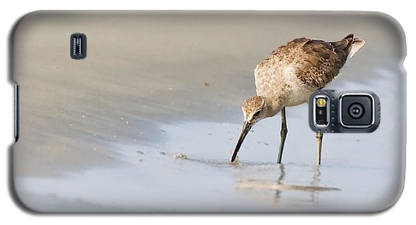 Galaxy S5 Case featuring the photograph Willet On Beach by Bob Decker