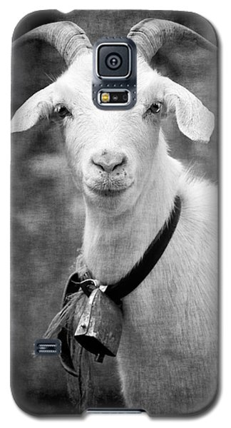 Willhelm Of The Alps Galaxy S5 Case