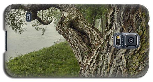 Willow Bay - Lake Geneva Wisconsin Galaxy S5 Case