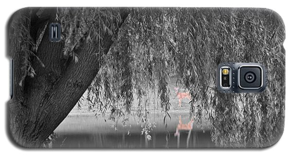 Willow Deer II Galaxy S5 Case