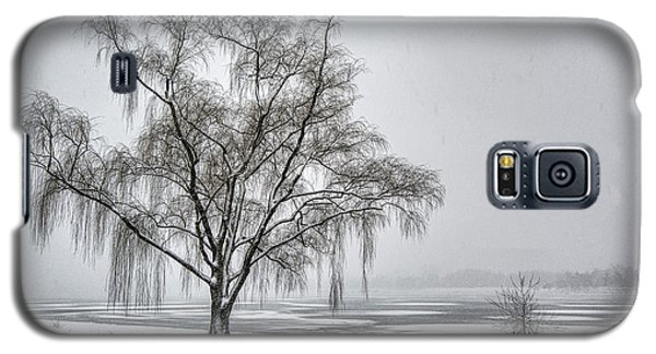 Willow In Blizzard Galaxy S5 Case