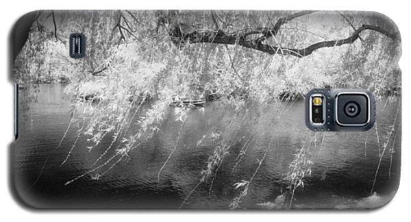 Willow Tree Lake II Galaxy S5 Case by Dave Beckerman