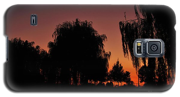 Willow Tree Silhouettes Galaxy S5 Case by Joe  Ng