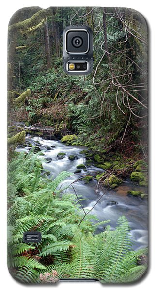 Galaxy S5 Case featuring the photograph Wilson Creek #14 by Ben Upham III