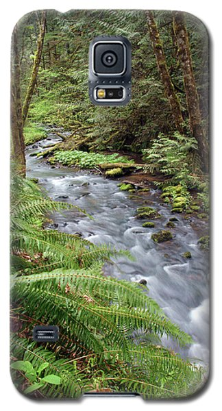 Galaxy S5 Case featuring the photograph Wilson Creek #21 by Ben Upham III