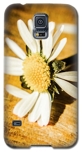 Daisy Galaxy S5 Case - Wilt by Jorgo Photography - Wall Art Gallery