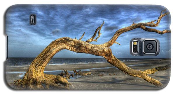 Wind Bent Driftwood Galaxy S5 Case
