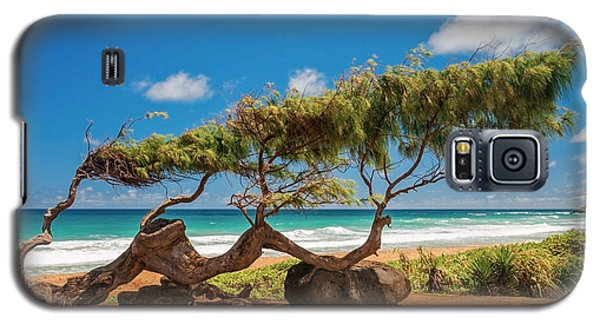 Wind Blown Tree Galaxy S5 Case