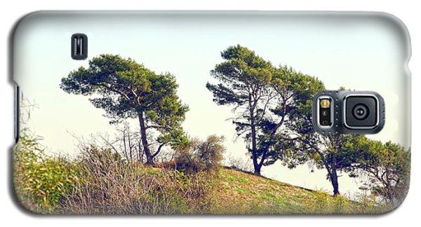 Wind Blown Trees Galaxy S5 Case