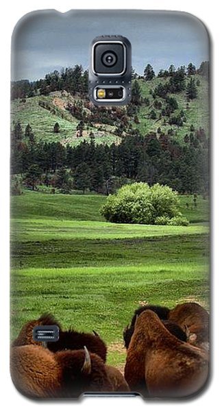 Wind Cave Bison Galaxy S5 Case