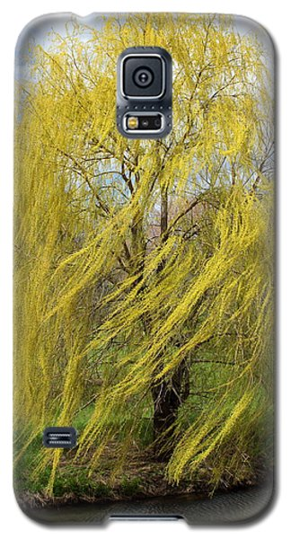 Wind In The Willow Galaxy S5 Case