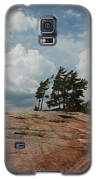 Wind Swept Trees On Rocks Galaxy S5 Case