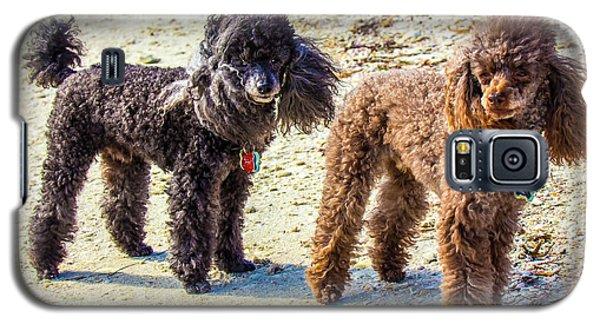 Windblown Beach Bums Galaxy S5 Case