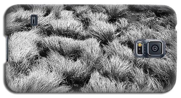 Windblown Grass Galaxy S5 Case