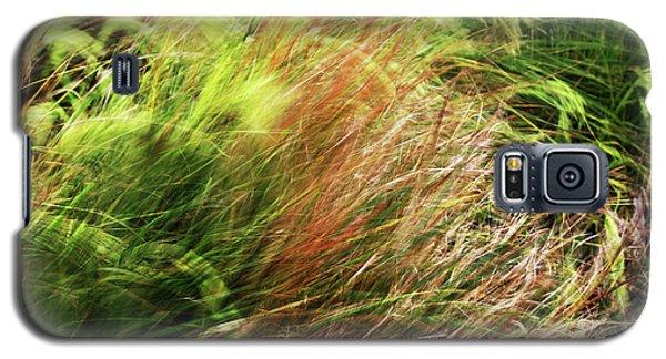 Windblown Grasses Galaxy S5 Case by Nareeta Martin