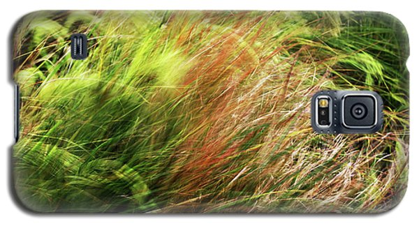 Windblown Grasses Galaxy S5 Case