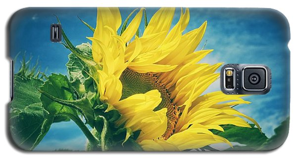 Galaxy S5 Case featuring the photograph Windblown  by Karen Stahlros