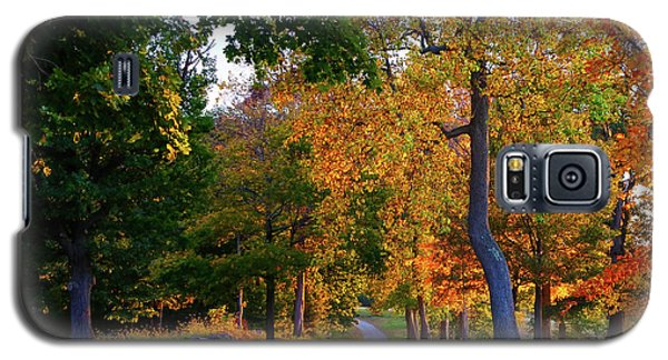 Winding Road In Autumn Galaxy S5 Case
