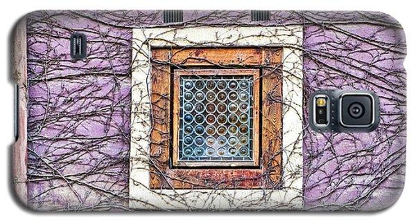 Window And Vines - Prague Galaxy S5 Case