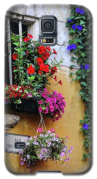 Window Garden In Arles France Galaxy S5 Case
