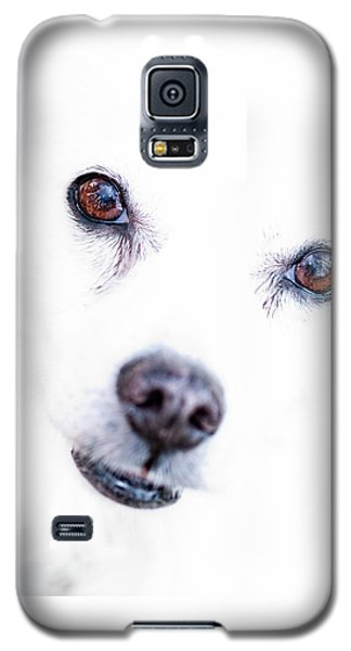 Galaxy S5 Case featuring the photograph Windows To The Soul by Lara Ellis