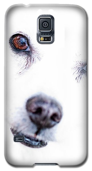 Windows To The Soul Galaxy S5 Case