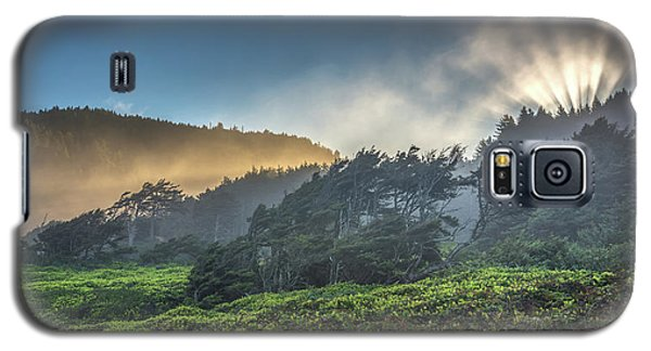 Galaxy S5 Case featuring the photograph Windswept Trees On The Oregon Coast by Pierre Leclerc Photography