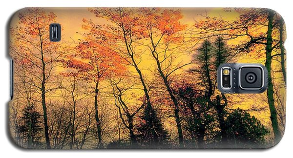 Galaxy S5 Case featuring the photograph Windy  by Elfriede Fulda