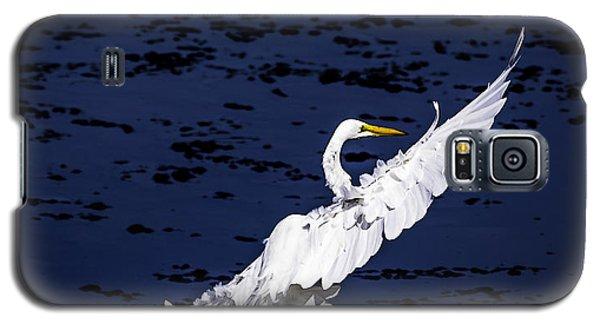 Windy Flight Galaxy S5 Case